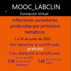 MOOC-LABCLIN-08-Ed-1-INFECCIONES PARASITARIAS PRODUCIDAS POR PROTOZOOS HEMÁTICOS.